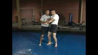Dan Henderson   Learn to Fight and Win 3