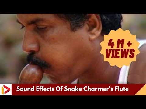 Sound Effects Of Snake Charmer's Flute | Music of Makudi | Snake Music