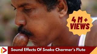 Sound Effects Of Snake Charmer's Flute | Music of Makudi | Snake Music