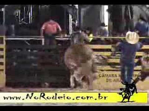Tou.ARANDU 2008 RODEIO EM TOUROS