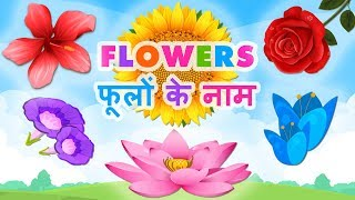 Flowers Name In Hindi | फूलों के नाम | Flowers Name In English