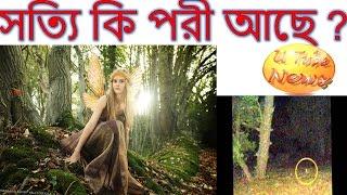 Fairy Really Alive?Shotti Ki pori Ase-আসলেই কি পরী বলতে কিছু আছে দেখুন ভিডিও -Bangla News Video