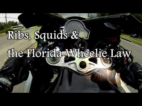 squids ribs and the florida wheelie law