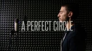 A Perfect Circle - Judith (vocal cover w/ lyrics)