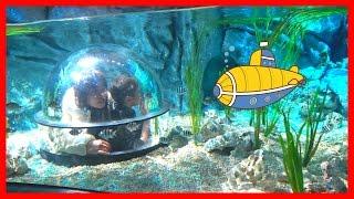 潜水艦でレゴの海を探検!!レゴランド名古屋 サブマリン・アドベンチャー お出かけ こうくんねみちゃん LEGO RAND JAPAN Submarine Adventure