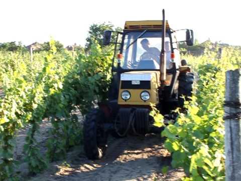 LTZ 55 A munka a szőlőben I.