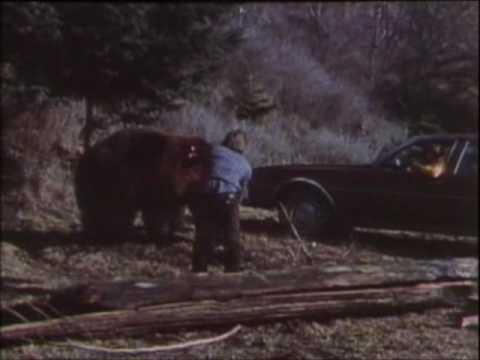 Muerto por oso