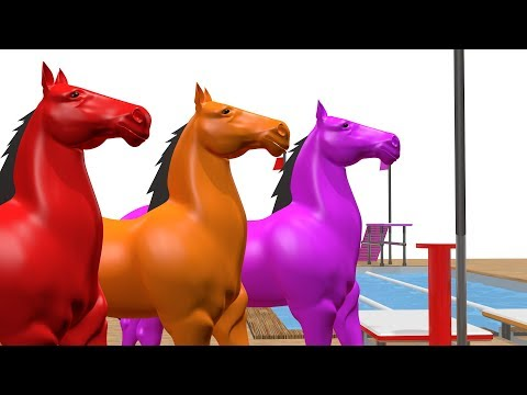 Learn Colors Horse Swimming Race Animals Cartoon Swimming Race Animals