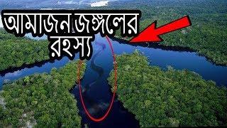 Amazon Rainforest - The Amazon Jungle - Bangla