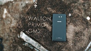 Walton Primo GM2 Review | Vitamintech