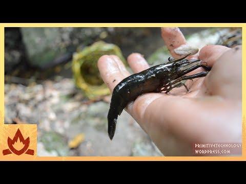 Xxx Mp4 Primitive Technology Freshwater Prawn Trap 3gp Sex