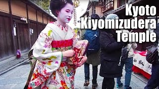 Travel Japan Guide | Kyoto Temple GEISHA SPOTTED 清水寺 #3