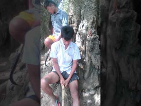 Xxx Mp4 Garo Video Prak Ja Ting 3gp Sex