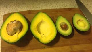 Florida Avocado vs Hass Avocado