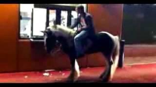 Drunken Man On Horse Goes Through McDonald's Drive Thru!!!.flv