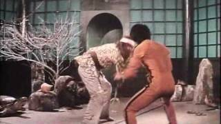 Bruce Lee - Enter the Game of Death  (Part 4 of 6)