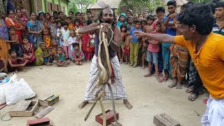 Amazing Snake Charming | Most Poisonous Snake Cobra & Rat Snake Played By Snake Charmers
