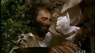Evangelio de Mateo (24)