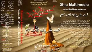 Nasir Asghar Party Volume 23 (2012-13). Haey Zainab veer di.