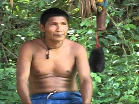 Xxx Mp4 Somos Yanomami 3gp Sex