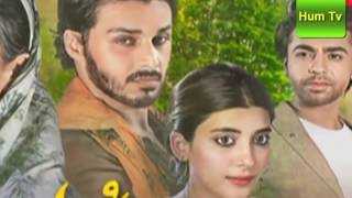 Udaari Episode 16 HD Drama Serial Hum TV Drama 24 July 2016