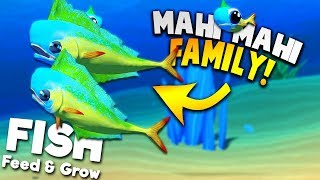 UNLOCKING NEW MAHI MAHI AND STARTING A MAHI MAHI FAMILY! | Feed And Grow Fish SURVIVAL Gameplay