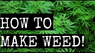 HOW TO MAKE FAKE WEED FOR YOUR VIDEOS :D