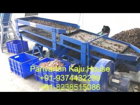 Xxx Mp4 Automatic Cashew Scooping Machine By Parivartan Kaju House 3gp Sex