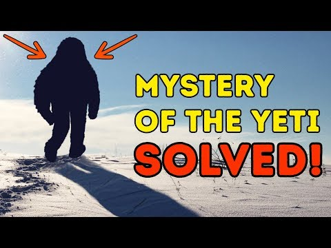 Scientists Finally Show Who The Yeti Is