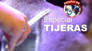 PELUQUERÍA CANINA ESPECIAL TIJERAS -   ALL ABOUT GROOMING SCISSORS