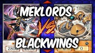 Yugioh BLACKWINGS vs MEKLORDS (Yu-gi-oh Deck Duel!)