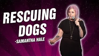 Samantha Hale: Rescuing Dogs (Stand Up Comedy)