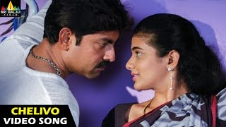 Pellaina Kothalo Songs | Chelivo Na Video Song | Jagapathi Babu, Priyamani | Sri Balaji Video