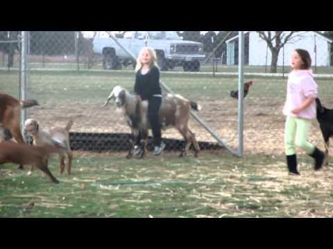 Farm Girl Fun