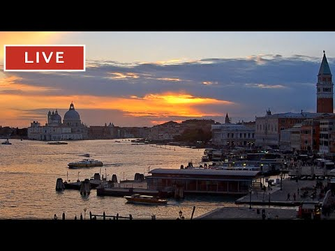 Webcam Venice Live St. Mark s Basin in Live Streaming from Tribute to Music Venice