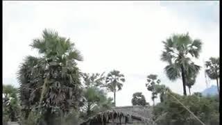 ဟွာဟွံင္ဍးေ၀့ယု္အ္ုက်း   -    ယိုင္   -    ယင့္သာအဲ