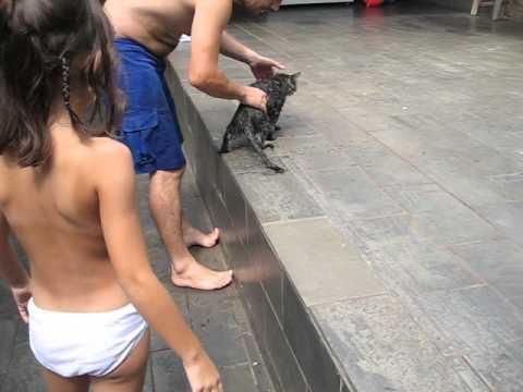 MANIFESTAÇÃO BANHO DO TIGRÃO MAIO 2010