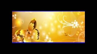 Lakhau Tara Music Track  with Lyrics by Nawaraj Thapa