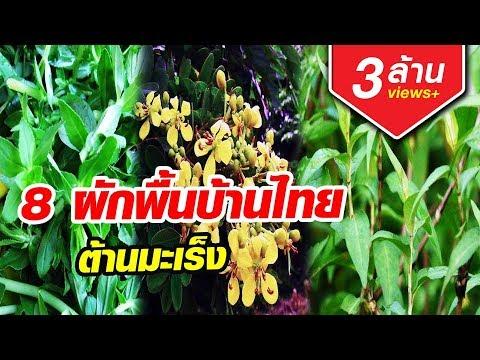 มะเร็งยังกลัว 8ผักพื้นบ้านไทย ต้านมะเร็ง หามากินด่วน Aranya Channel