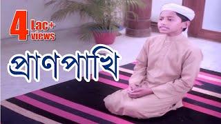 প্রাণপাখি । Pranpakhi। কলরব শিল্পীগোষ্ঠী । মরমি সঙ্গীত । islami song