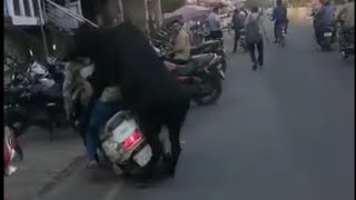 Bull sex with girl on scooty ... But fail.pity bull and pity girls