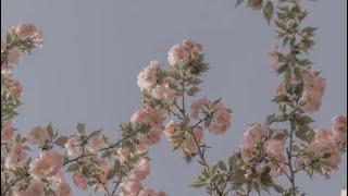 SAYANG NAMAN by EURIKA (OFFICIAL MUSIC VIDEO)