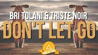 Bri Tolani & Triste Noir - Don