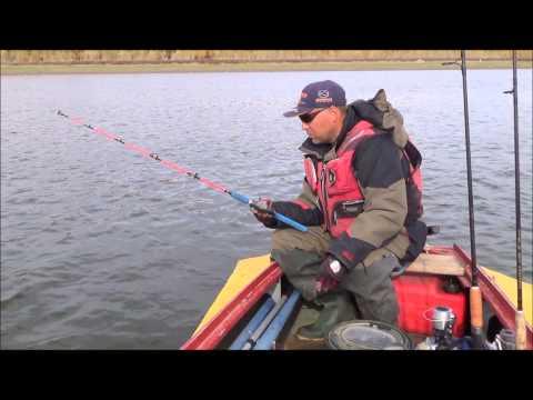 ловля судака с лодки на отвес на живца