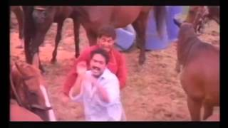 The King   Superhit Malayalam Movie Action Scene 1   Mammootty
