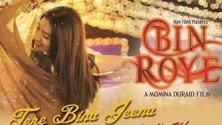 Tere Bina Jeena - Bin Roye - Rahat Fateh Ali Khan - HD Video With Lyrics 2015