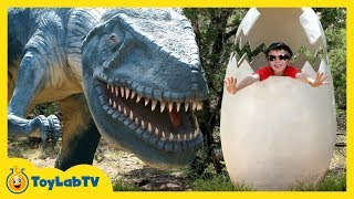 GIANT LIFE SIZE DINOSAURS IRL! Dinosaur World Park, Family Fun Activities, Kids Toys & Surprise Eggs