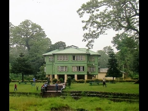 HOLLONG TOURIST LODGE, JALDAPARA NATIONAL PARK, DOOARS,