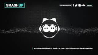 SMASHUP - Tiesto & Chainsmokers vs Eminem - Split (Only u) vs Lose yourself