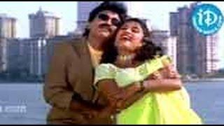 Deerga Sumangali Bhava Movie Songs - Taaja Taajaa Rojaalannee Song - Rajasekhar - Ramya Krishna